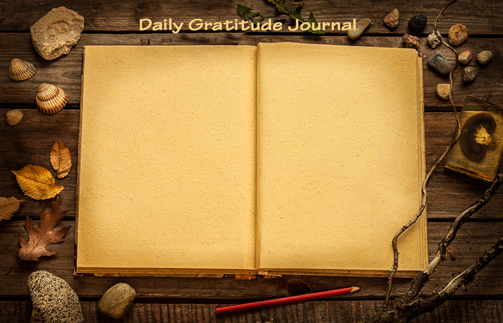 Daily Gratitude Journal Slide